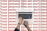 US firms offer ransomware recovery, but just pay to get data back