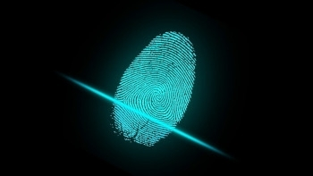 NEC Australia seeks compensation for terminated biometric services contract