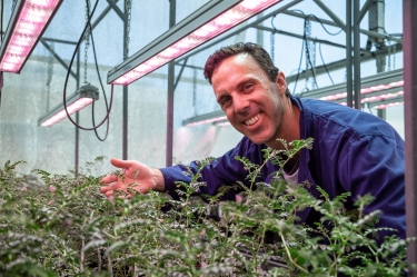 New technology aims to speed up development of more resilient crops