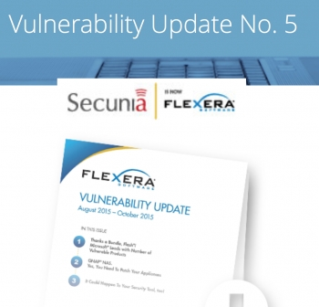 Adobe Flash makes Windows 8, 8.1 and 10 more vulnerable: Flexera