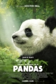 Pandas coming to the IMAX big screen