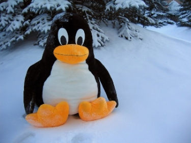 ZDNet and Linux often provide a good chance for a laugh