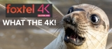 FULL LAUNCH VIDEO in 4K: Foxtel unveils 4K-ing good TV 'like never before'