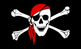 Piracy levels fell in 2018, comms dept survey finds