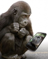 Gorilla Glass 5 – great for swinging through trees