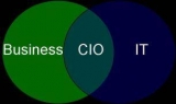 CIOs, have your say on your work, priorities and issues