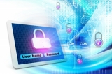 Global supply chain vulnerable to cyber security risks: report